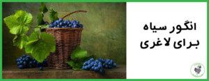 انگور سیاه برای لاغری