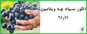 انگور سیاه چه ویتامینی دارد؟